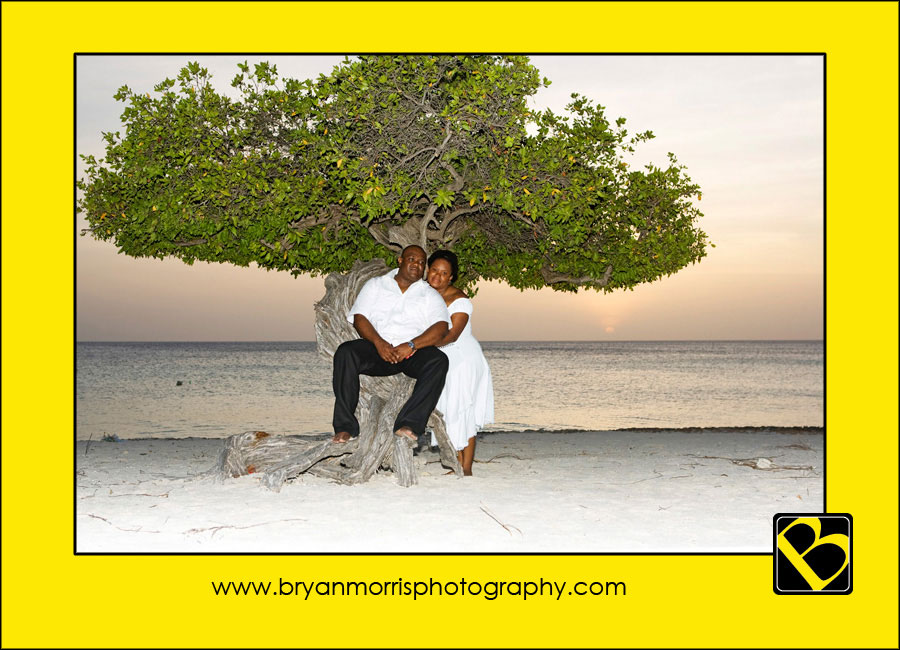 Love at Aruba's Famous Tree